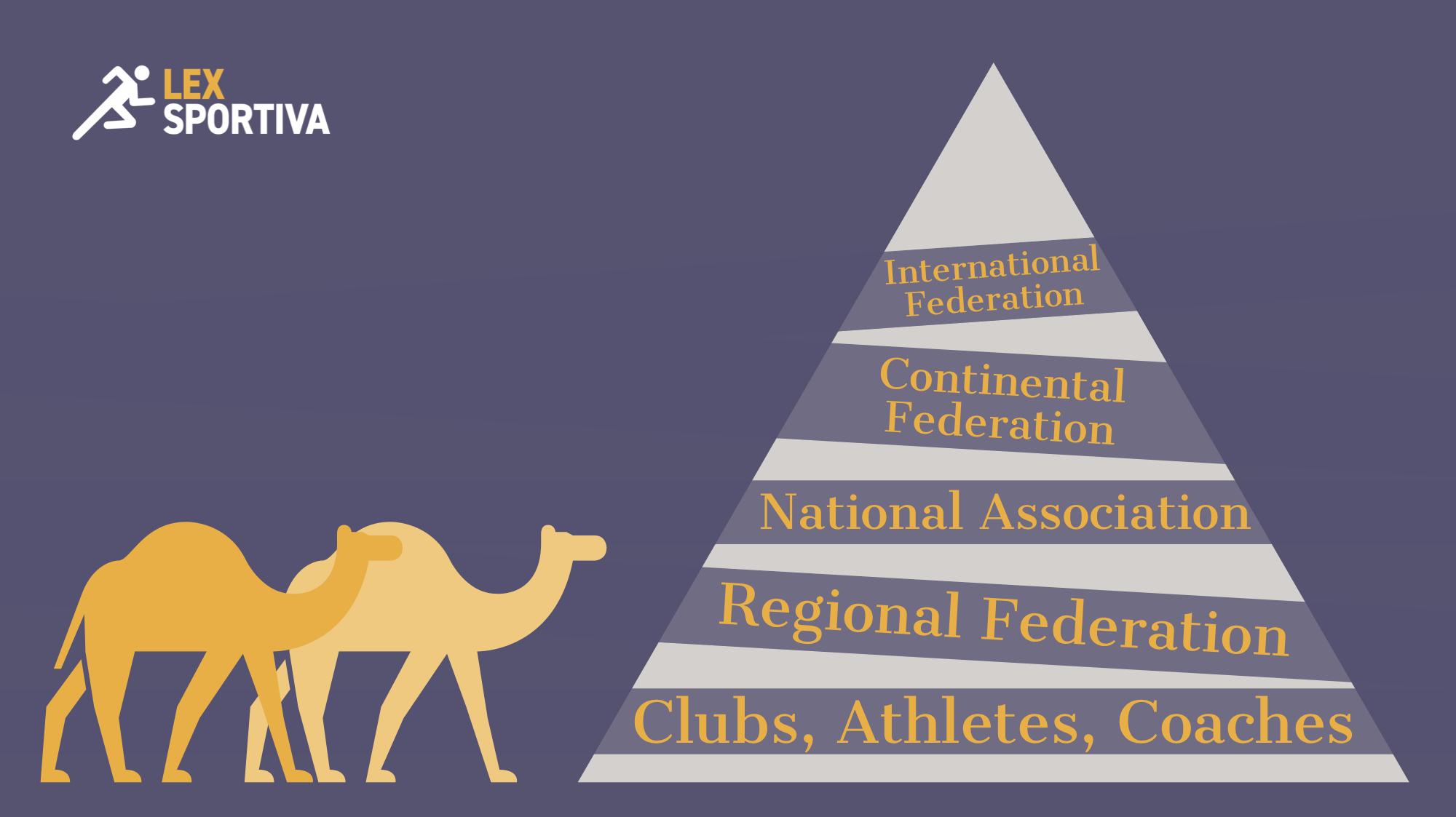 LS Pyramid Diagram